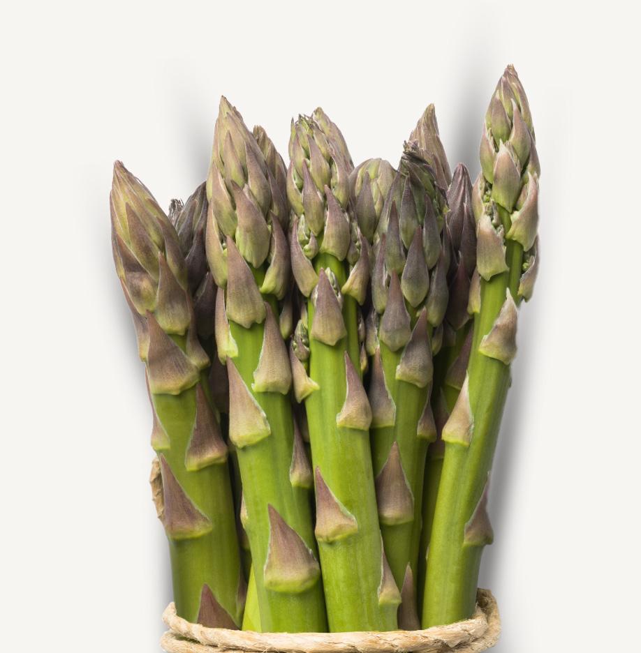 asparago-primo-mazzetto-corda