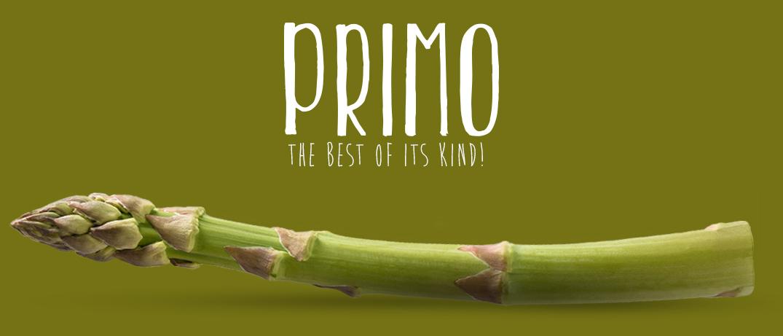 asparago-primo-visori_homepage_eng